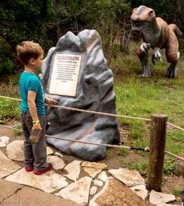 Checking out a Liliensternus at Dinosaur World