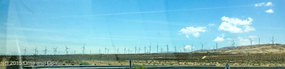 This wind farm went on for miles