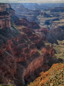 We got a slightly different view of the canyon at every stop. There were a lot of pictures to review.