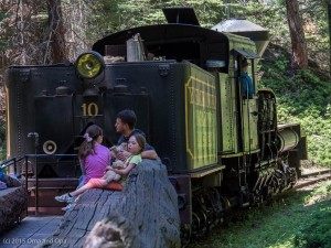 "Yosemite Sugar Pine Railroad Shay locomotive with open ""log"" passenger car"
