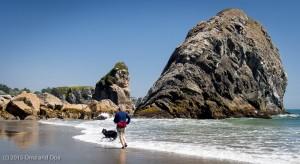 Coda loved the beach and ocean