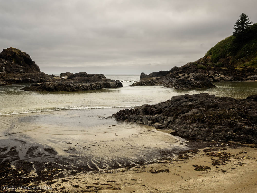 Our first stop in Yaquina Head Outstanding Natural Area was pretty but not much wild/sea life