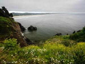 The Oregon coast, looking towards Newport