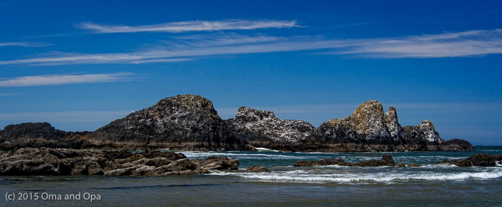 The coast near Waldport
