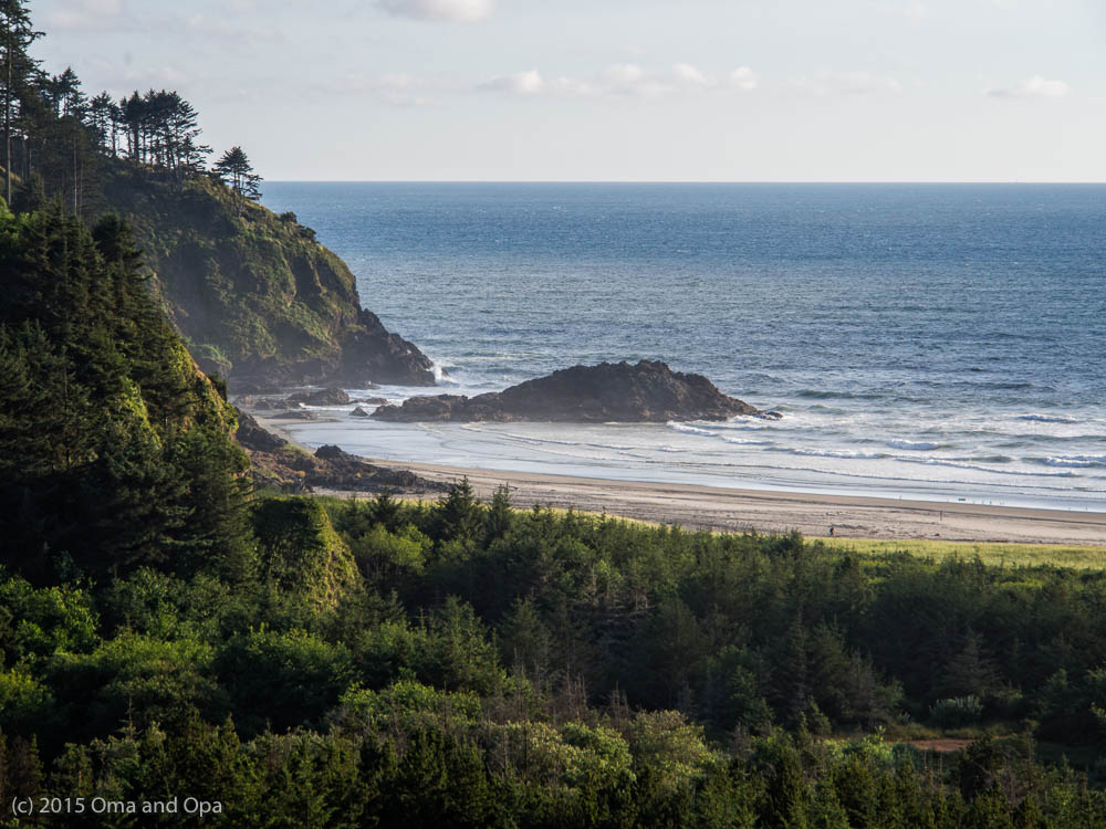 Beach and rugged coast line at Cape Disappointment