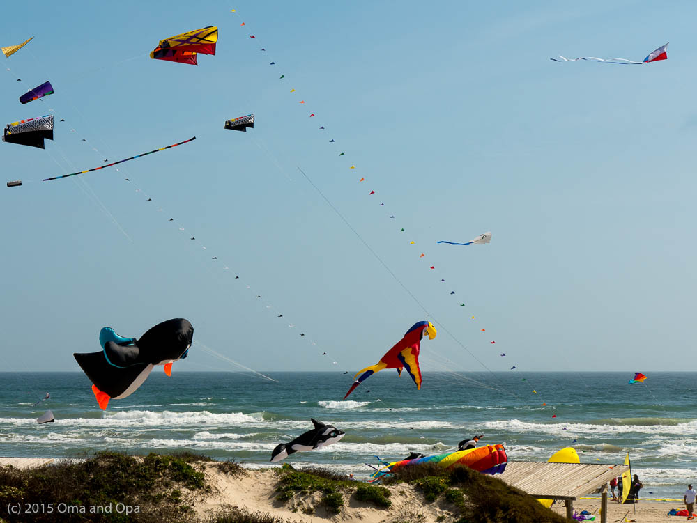 Kite day at Padre Island National Seashore