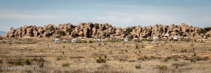 """The ten """"RV"""" sites, seen from one of the desert trails"""