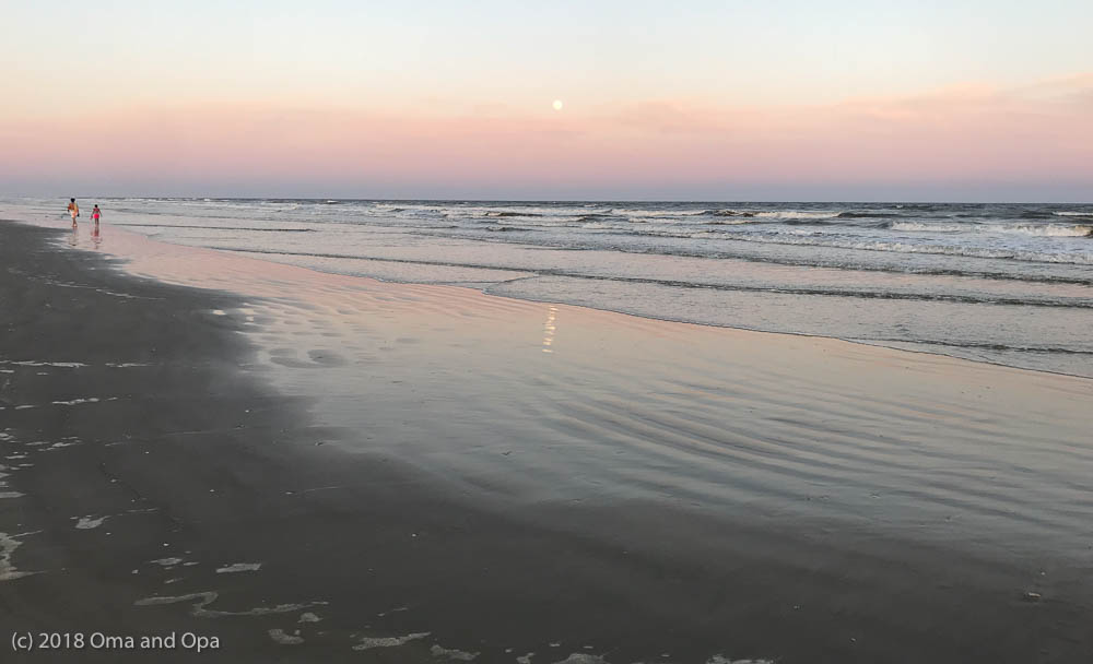 Beach Time at Galveston Island State Park – March 2018
